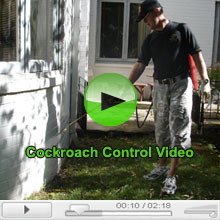 Cockroach Pest Control video