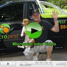 Micropest Sydney Introduction Video