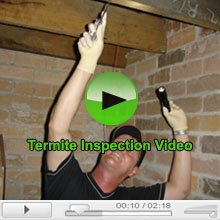 Termite inspection Video