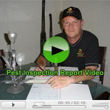 Pest Inspection Report