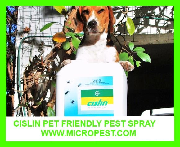 Cislin Pet Friendly Pest Spray Sydney Pest Control Sydney N S W