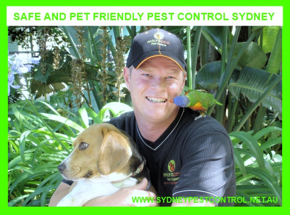 Pet friendly Pest Control