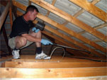 Roof void termite inspection (Click to enlarge)