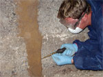 Sub Floor Termite Inspections (Click to enlarge)